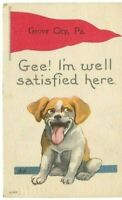 Antique Post Cards c.1911 Pa.Grove City Banner  Puppy Dog
