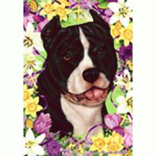 Easter House Flag - Black and White American Pit Bull Terrier 33405