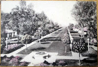 1930 Postcard: San Marcos Hotel & Bungalows - Chandler, Arizona AZ