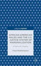 African-American Males and the U.S. Justice System of Marginalization: A Nationa