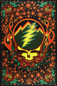 GRATEFUL DEAD-3D SCARLET FIRE SYF-STEAL YOUR FACE-60 X 90 TAPESTRY-w/ Glasses