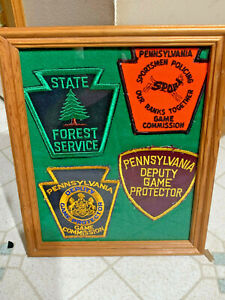 VINTAGE PA GAME WARDEN GAME PROTECTOR COMMISSION FOREST SERVICE PATCHES ORIGINAL