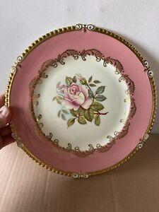Ansley England..S BENTLEY RARE Stunning Rose Display Plate S924
