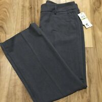 AMANDA + CHELSEA Pewter Flat Zip Front Solid Straight Leg Dress Pants NWT Sz 14P
