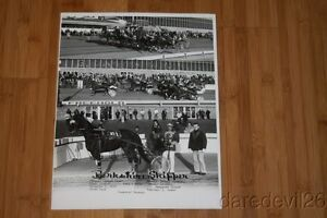 Vintage 1979 Harness Horse Racing Freehold Speedway Winner 11x14 Photo