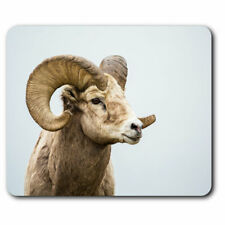 Computer Mouse Mat - Wild Big Horned Sheep Animal Horns Office Gift #24436