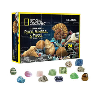 Mineral Fossil Stone Kit Christmas Advent Calendar Gift Box Early Education Toys