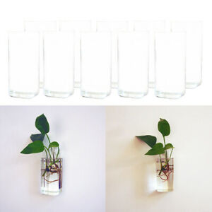 10pcs Clear Hanging Vase DIY Plant Container Terrarium Wall Mounted Decor