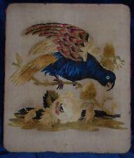 Squisito antico primi anni 1800 Seta Ricamato CREWEL lavoro Pappagallo 33 x 27 cm