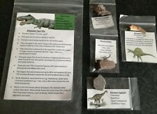 Dinosaur Fossil Pack REAL DINOSAUR Fossils -  Egg Shell, Bone, Coprolite, Tooth