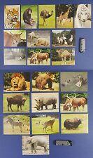 21 x POSTCARD  animals  rhinoceros, stork,tiger,bear,camel,giraffe,aurochs,zebra