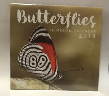 2019 Butterflies Monthly Calendar Mini 5.6x5.3 Inch Craft Photography Picture