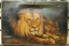Early 20th Century Oil Painting of Lions Signed and dated