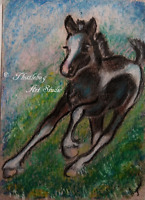 ACEO Wild Horse Pony Animal Wildlife Art Nature Artwork Pastel Painting