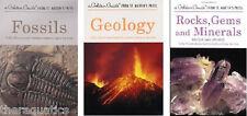 Rocks GEMS MINERALS FOSSILS GEOLOGY Illustration Guides ID ROCK Books CHOOSE