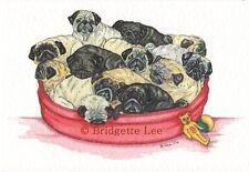12 Pugs   Watercolour/ink Painting  by Bridgette Lee pug dog