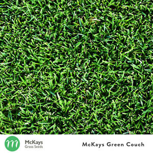 McKays Bermuda Couch Grass Seed Blend - 1kg - Lawn Seed