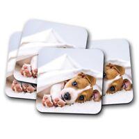 4 Set - Cute Jack Russell Pup Cork Backed Drinks Coaster - Dog Animal Mum #8286