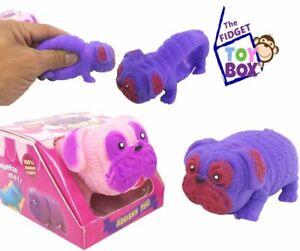 1x Pug, Dachshund, Pig Squish Squishy Animal Sensory Stress Balls