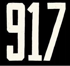 917 Vanity NYC  Phone Number 917-999-1031