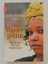 Joana Adesuwa Reiterer Die Wassergötter wie ich den Bann des Voodoo brach