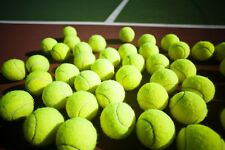 100 used Tennis Balls that are good for dogs or children to play
