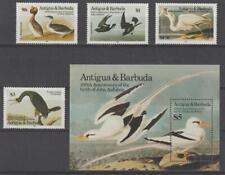 Antigua 1985 #846-49 Birds (Set of 4 & Souvenir Sheet) - MNH