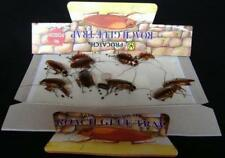 Cockroach Traps - 5 pack / with natural food pill