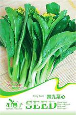 1 Pack 200 Choy Sum Seeds Flowering Cabbage Brassica Campestris C075