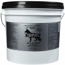 NUPRO SUPPLEMENTS 330045 Joint Support for Pets 20-Pound