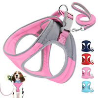 Reflective Cotton Padded Dog Harness and Lead Set Red Pink Puppy Chihuahua Vest