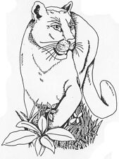 Unmounted Rubber Stamp, Stamps, Wild Animals, Wildlife, Cats, Panthers, Panther
