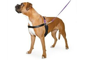 Ancol Happy At Heel Harness & Lead Set | Dogs