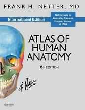 Atlas of Human Anatomy (English) 6th Edition by Frank H. Netter (FAST SHIP)