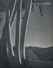 "Vintage Photogravure, George H. Phillips ""Sentinels"" 1935"