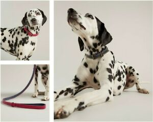 Joules Genuine Leather Dog Collars & Leads - Choose Pink or Navy