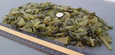 "BEACH SEA GLASS - Dead Leaf Green  -  Craft Glass - 2lbs  1/4"" - 1/2"" size"
