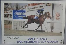 JUST A DASH signed 1981 Melbourne Cup Winner