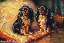 1905 Art~2 Cavalier King Charles Spaniel Dog Dogs on Pillow~New Large Note Cards