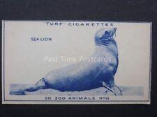 No.41 SEA LION - Zoo Animals - Carreras / Turf Slides (Plain back) 1954