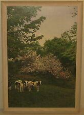 Rare Vintage DERICK STUDIO 'Cows & Blossoms' VERMONT Painted Photograph - Travel