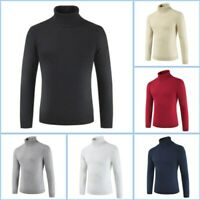 Sweater Knitwear Turtle Neck Mens Warm Casual Jumper Pullover Knit Winter