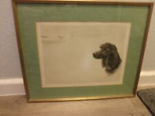 Vintage Maud Earl Vintage Lithograph, Irish Water Spaniel Dog