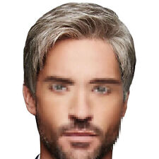 Handsome Mens Natural Short Wig Male Synthetic Hair Cosplay Party Full Wigs US