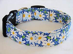 Charming Blue w/ White Daisies Daisy & Dots Dog Collar