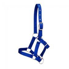 Tough 1 blue nylon mini halter size medium horse tack equine 50-701-4