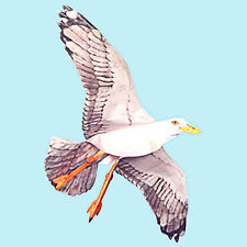 Jackite Seagull Kite / Windsock