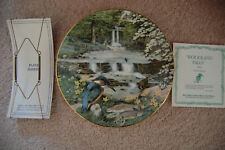 Peter Barrett All Creatures Great & Small May Woodland Falls Plate 1987