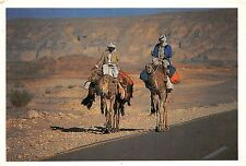 BG9284 the legend of bedouin and camel types folklore egypt