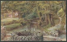Weymouth Posted J Salmon Collectable English Postcards
